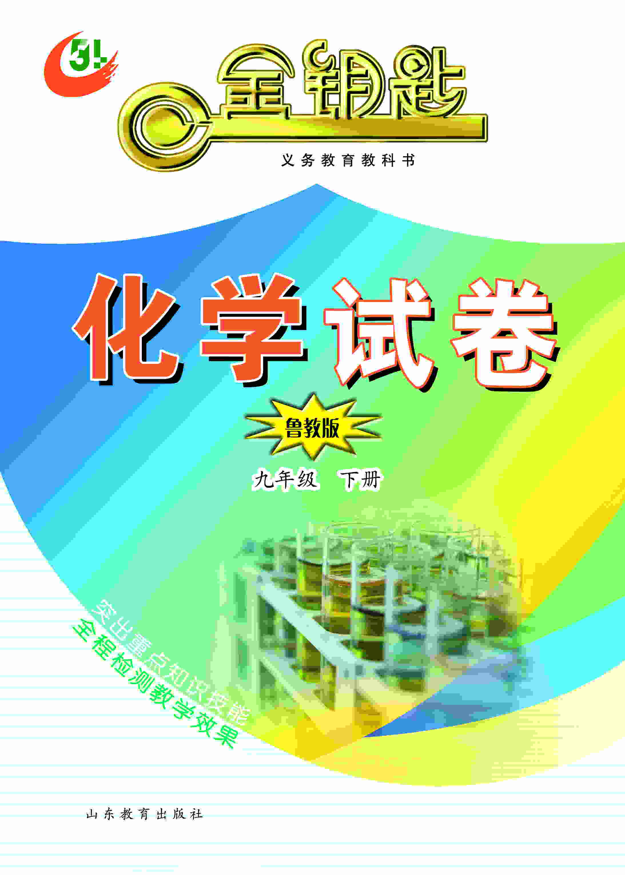 金钥匙·初中化学试卷 九年级下册 (鲁教版)(2017春)