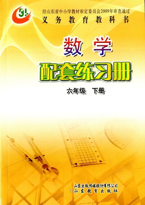 (五四)数学配套练习册 (六年级下册)
