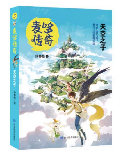 麦哆传奇系列丛书:天空之子